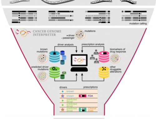 Introducing the Cancer Genome Interpreter
